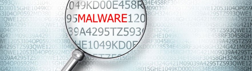 Bespoke Malware and Ephemeral Infections: New Threats on the
